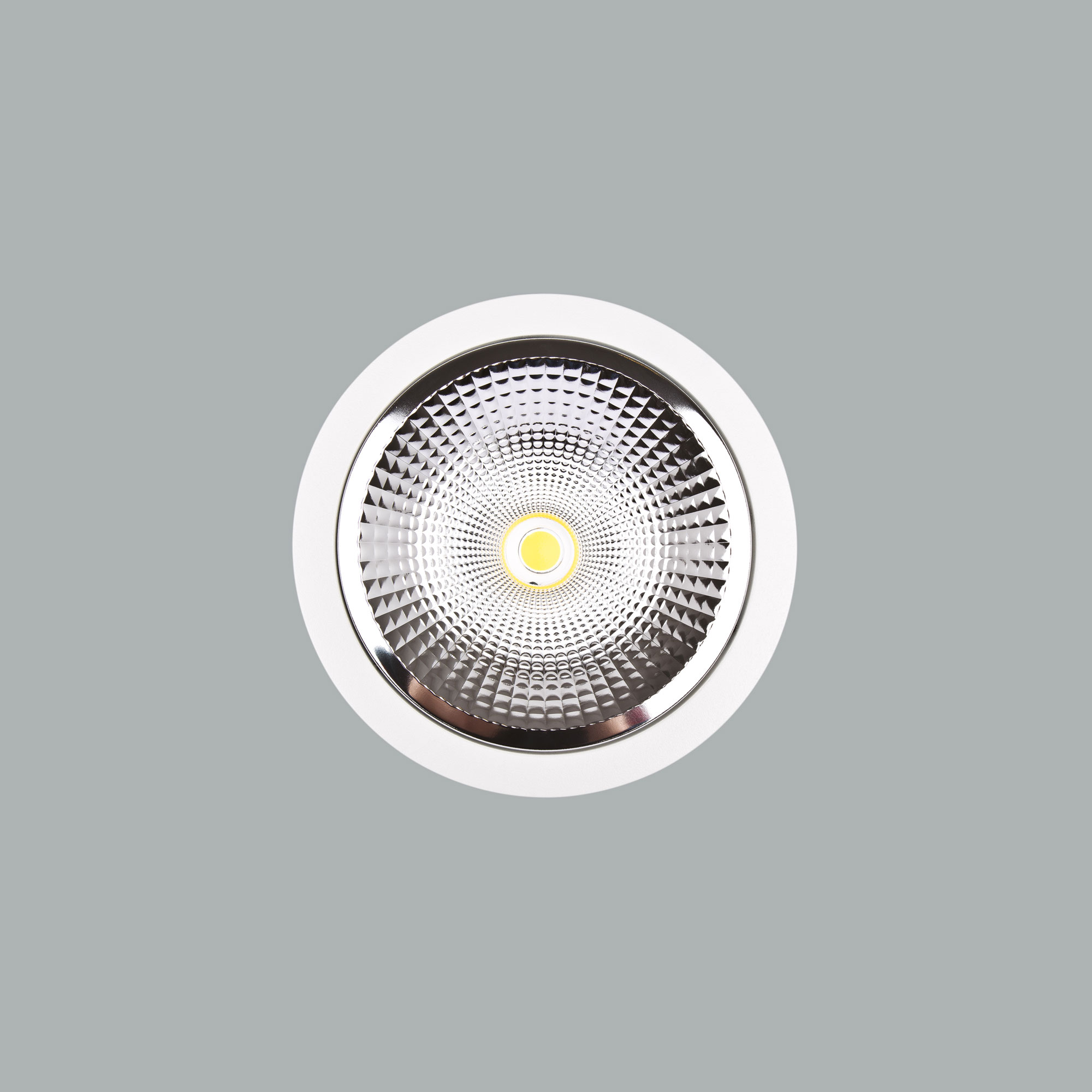 I01.MLR.15074_3