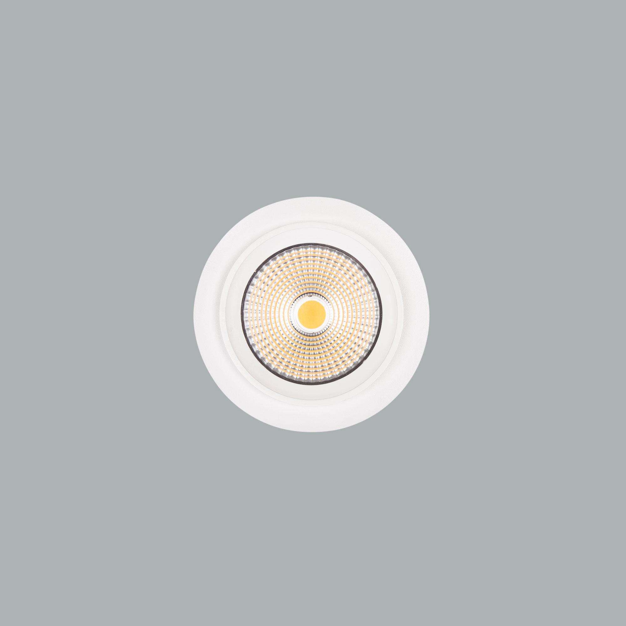 I01.MLR.17020_3