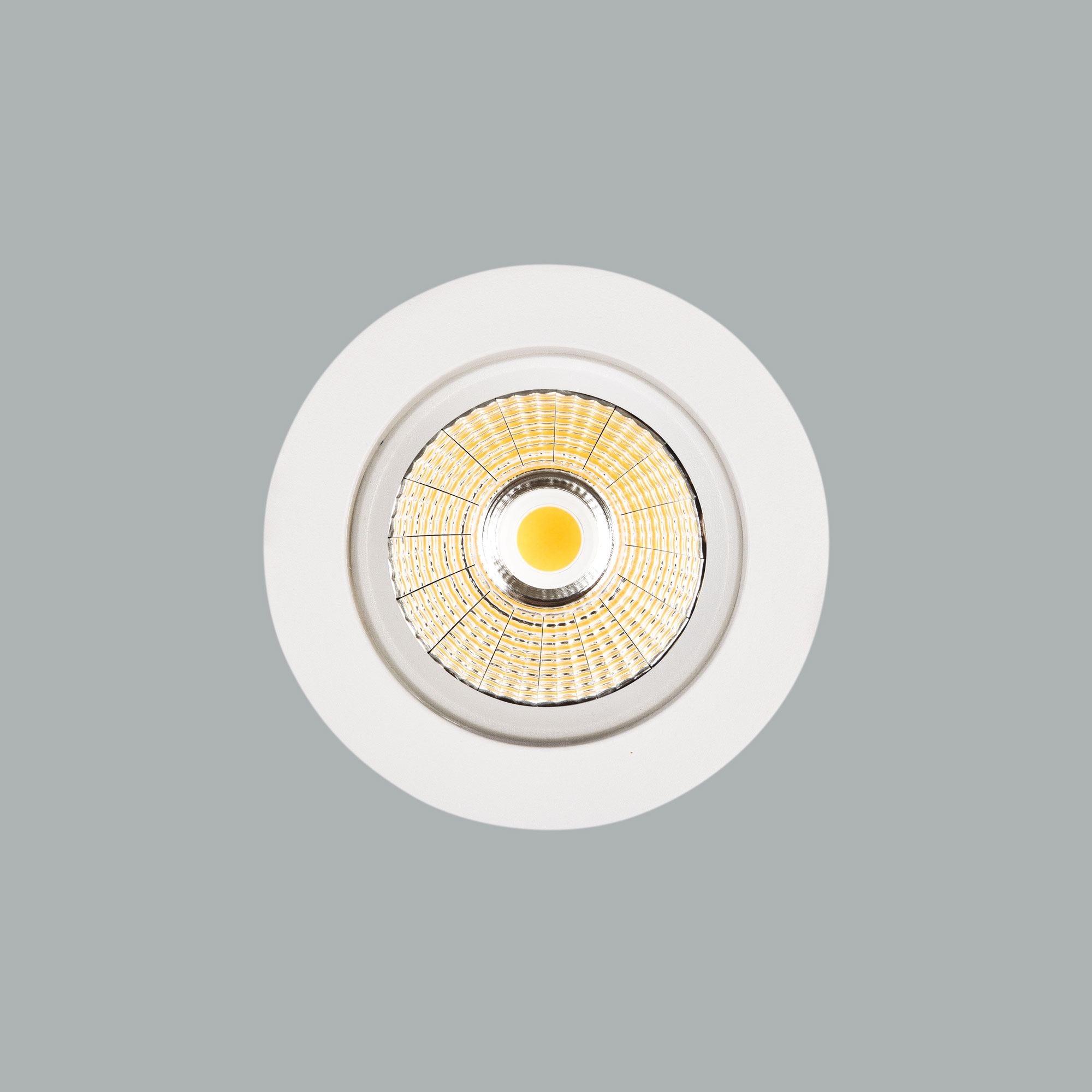 I01.MLR.17025_3