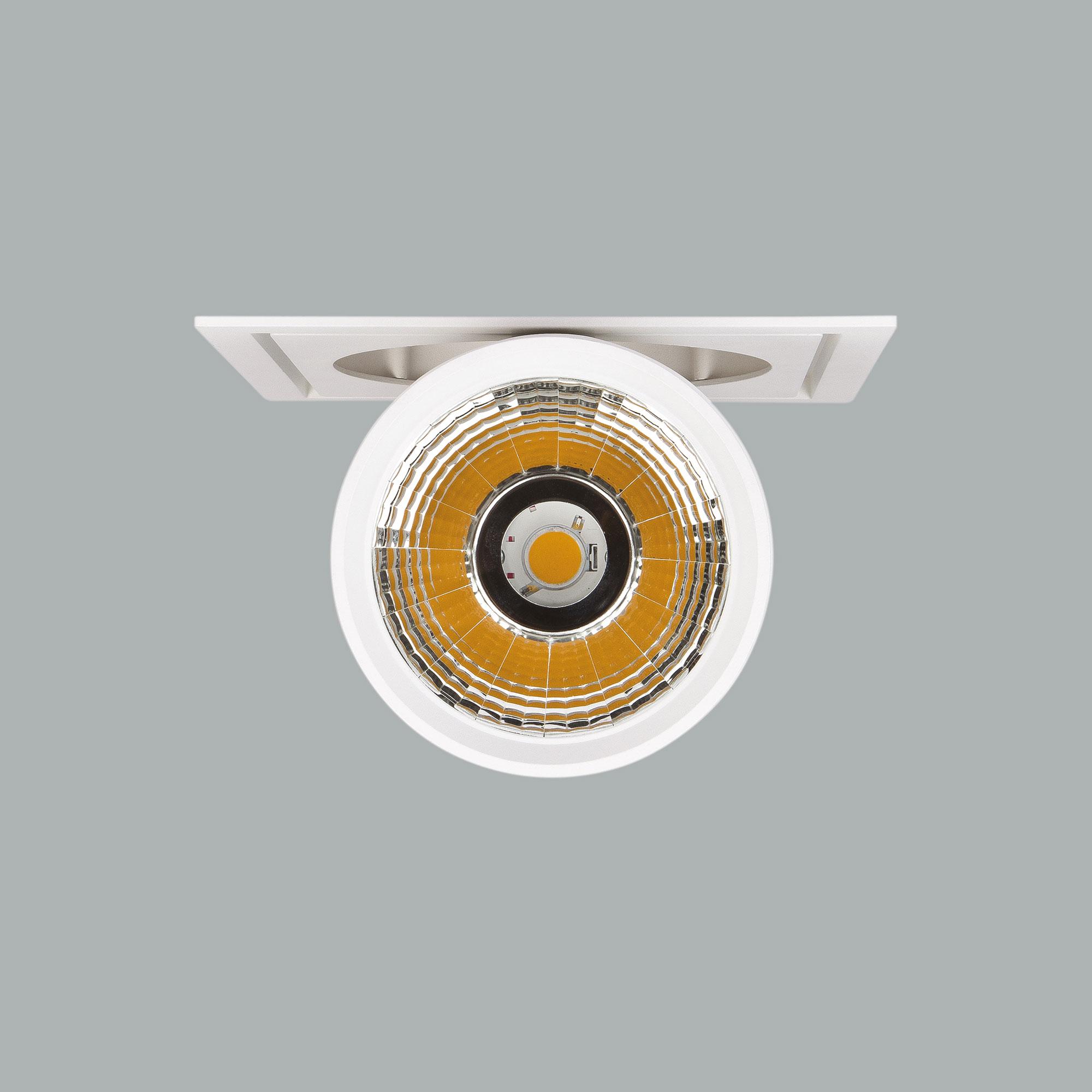 I01.MLR.17031_3