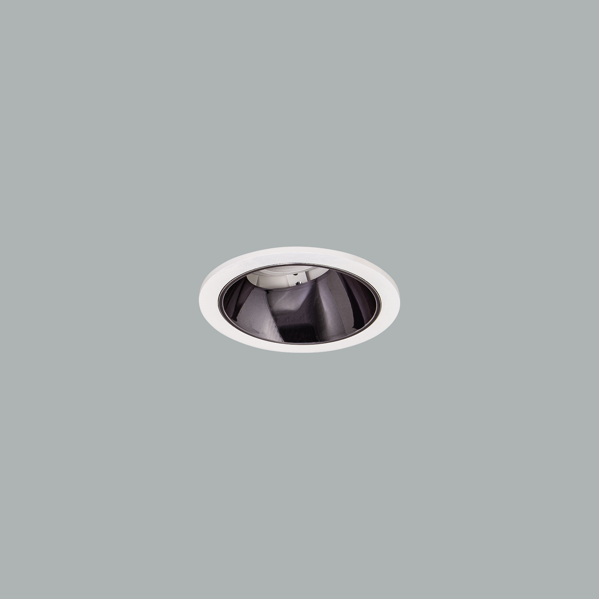 I01.MLR.14010_3