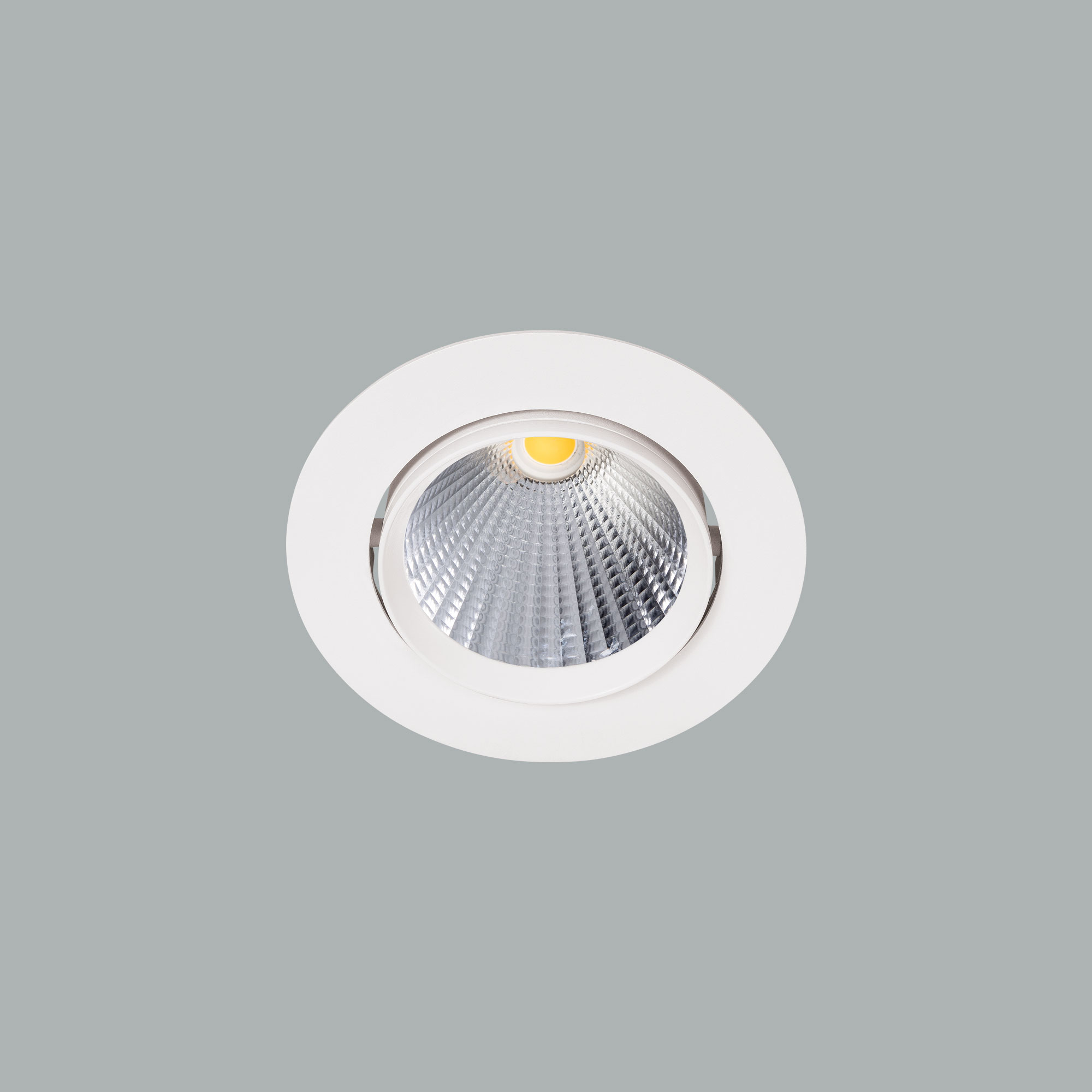 I01.MLR.16018_1