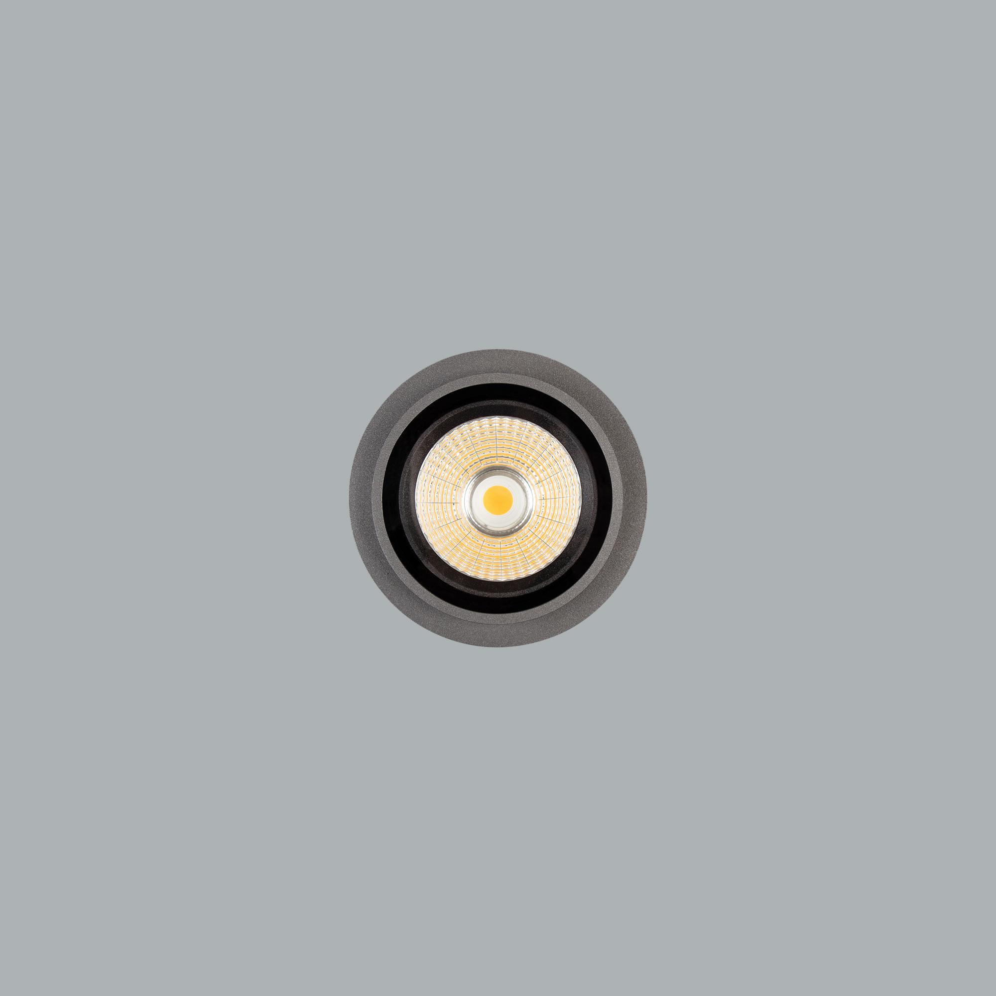 O07.MLR.10204_02