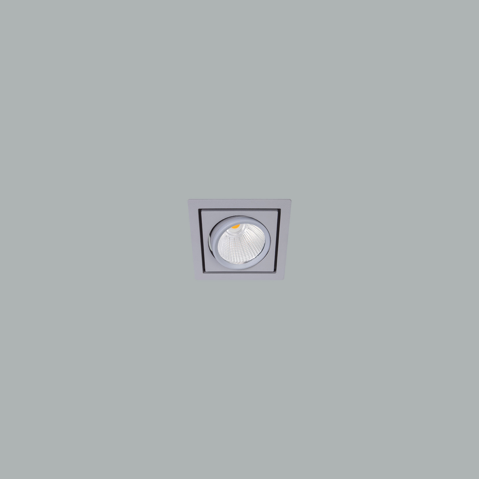 I01.MLR.17011_3