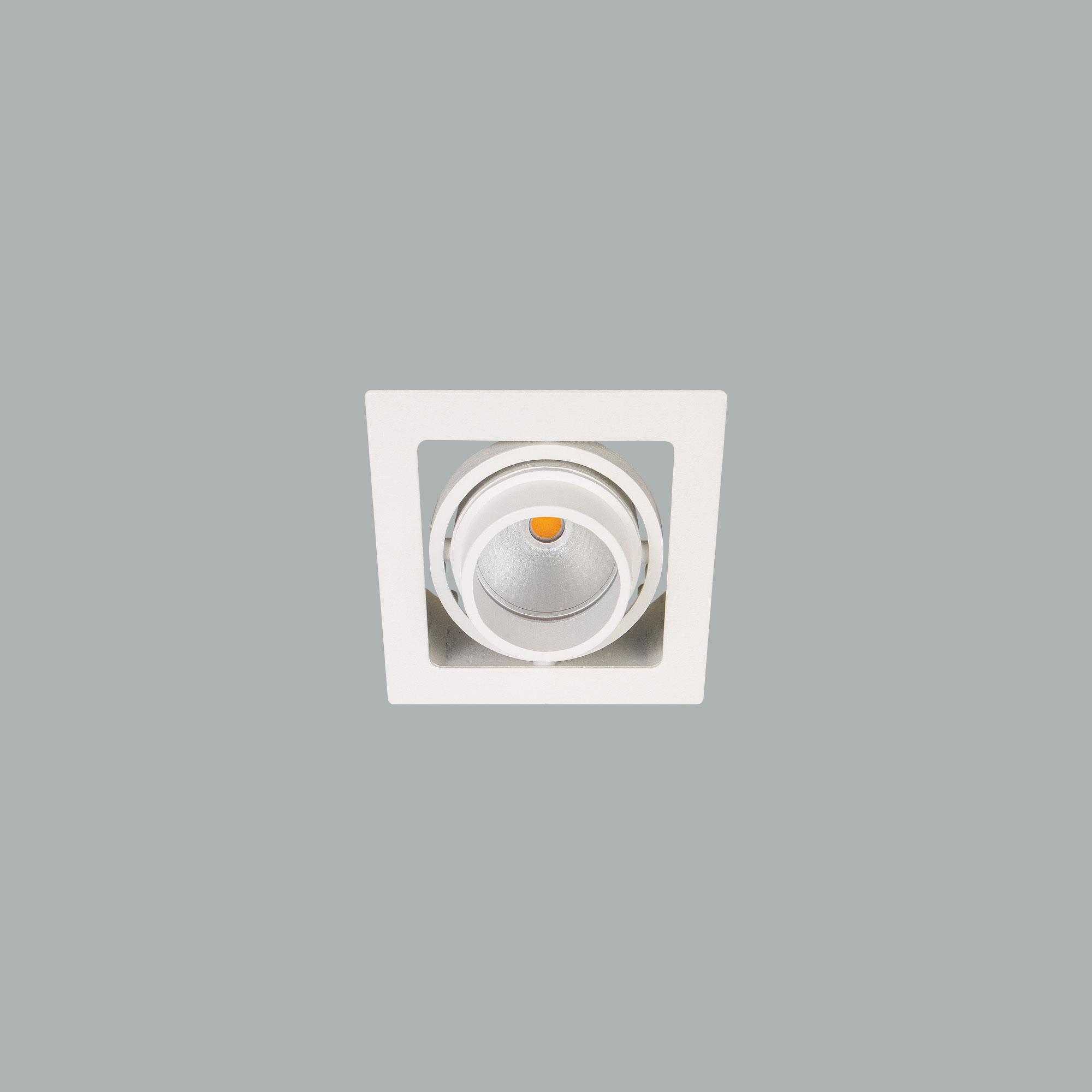 I01.MLR.99801_1